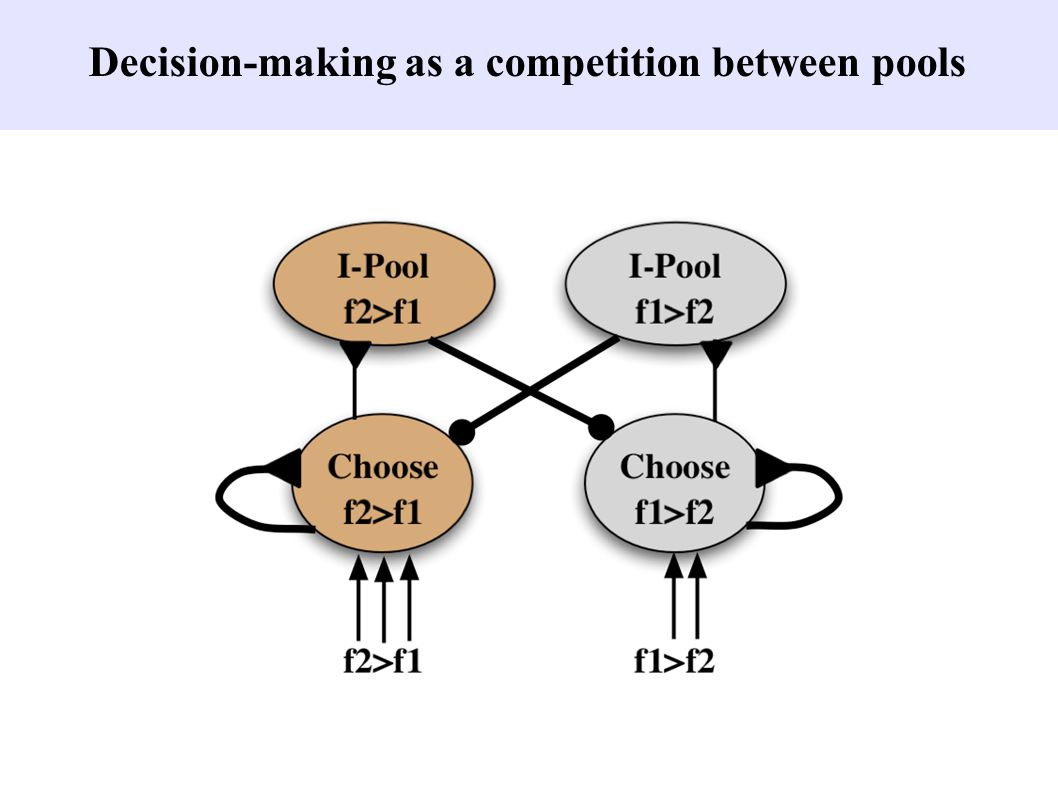 Decision-making as a competition between pools