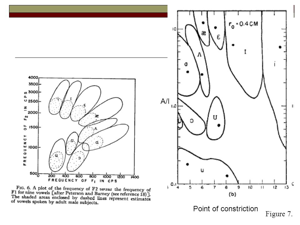 Point of constriction A/l Figure 5.