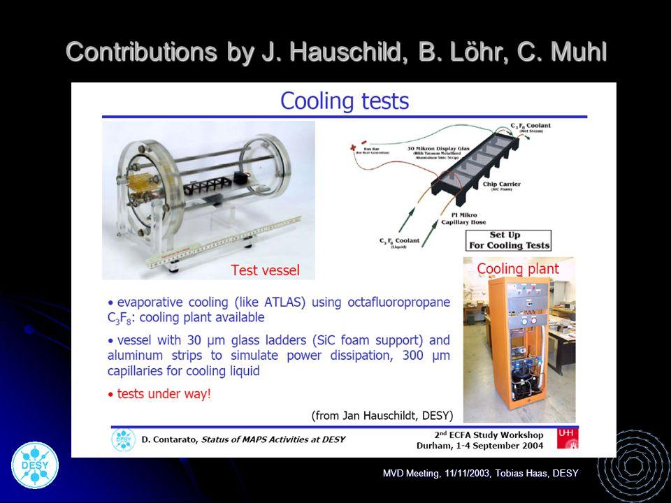 Contributions by J. Hauschild, B. Löhr, C. Muhl