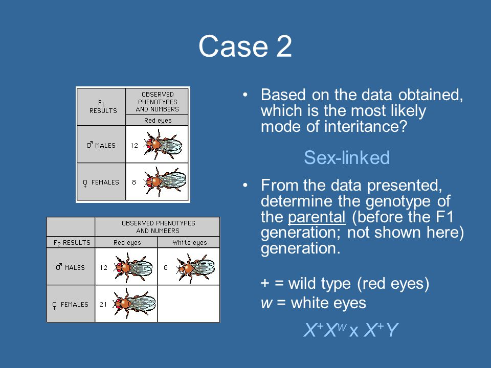 Case 2 Based on the data obtained, which is the most likely mode of interitance.