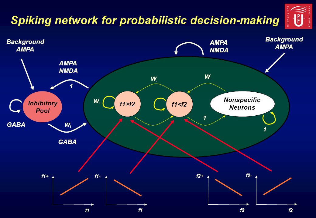 f1>f2 f1<f2 Nonspecific Neurons Inhibitory Pool Spiking network for probabilistic decision-making AMPA NMDA Background AMPA NMDA Background AMPA 1 1 1