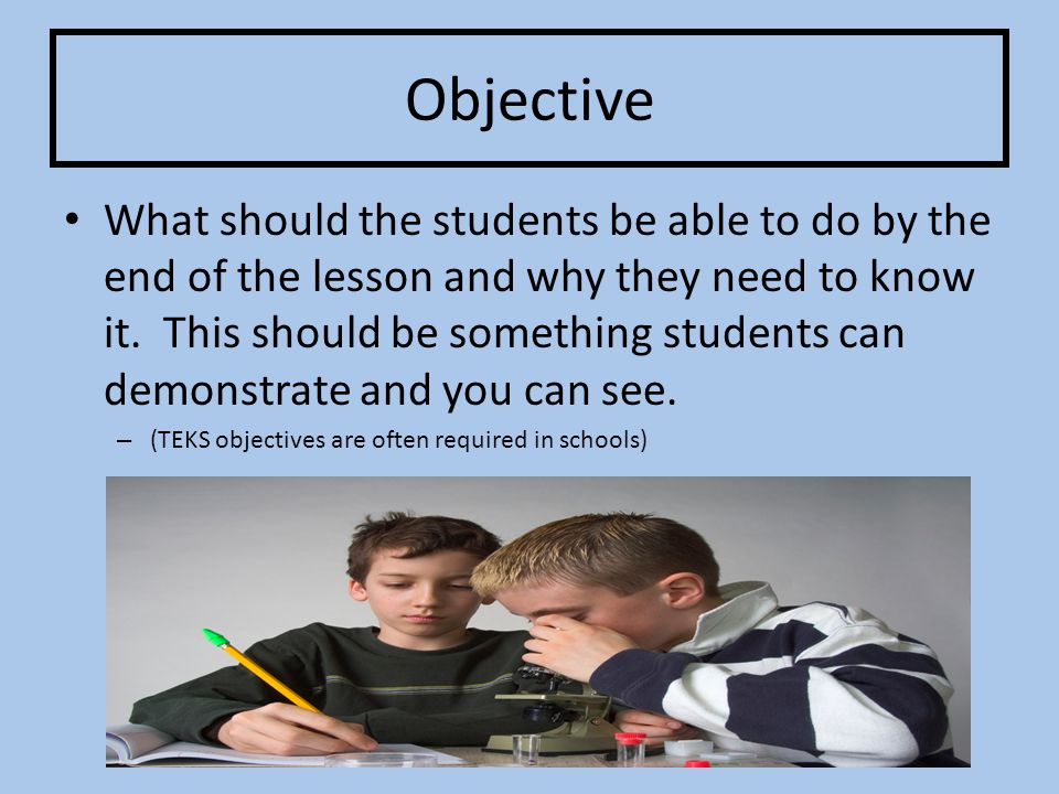 Input Vocabulary, skills, and concepts that the teacher will teach the students.