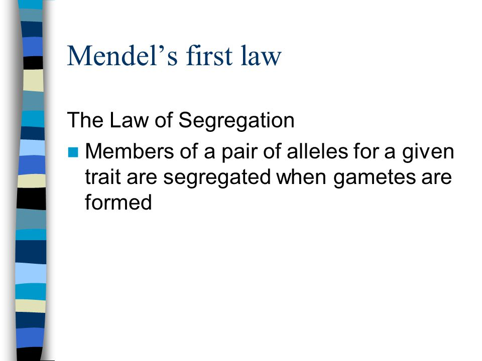 Mendel's first law The Law of Segregation Members of a pair of alleles for a given trait are segregated when gametes are formed