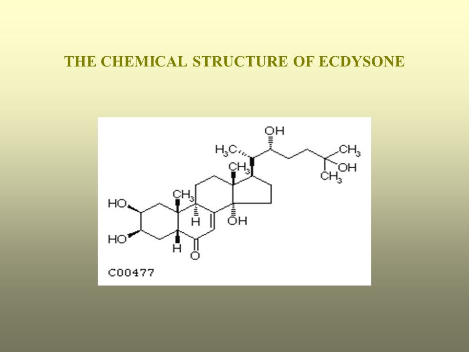 THE CHEMICAL STRUCTURE OF ECDYSONE