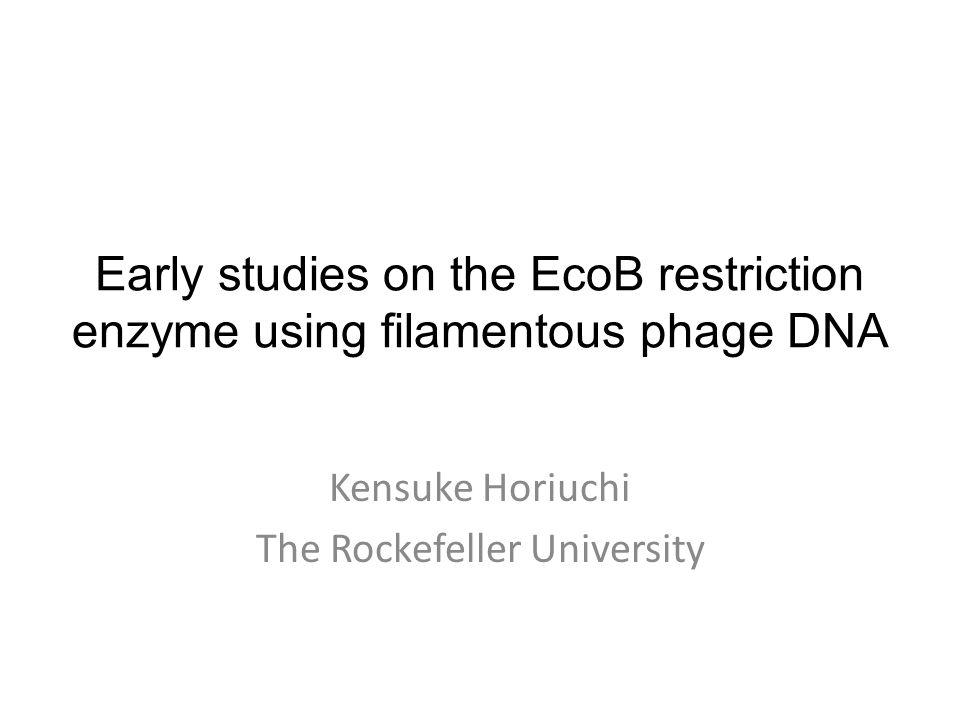 Early studies on the EcoB restriction enzyme using filamentous phage DNA Kensuke Horiuchi The Rockefeller University