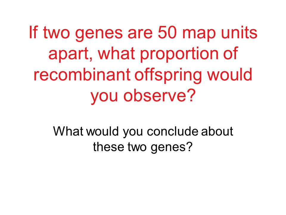 62.8% non-recombinant offspring, 37.2% recombinant offspring How far apart (in map units) are the genes.