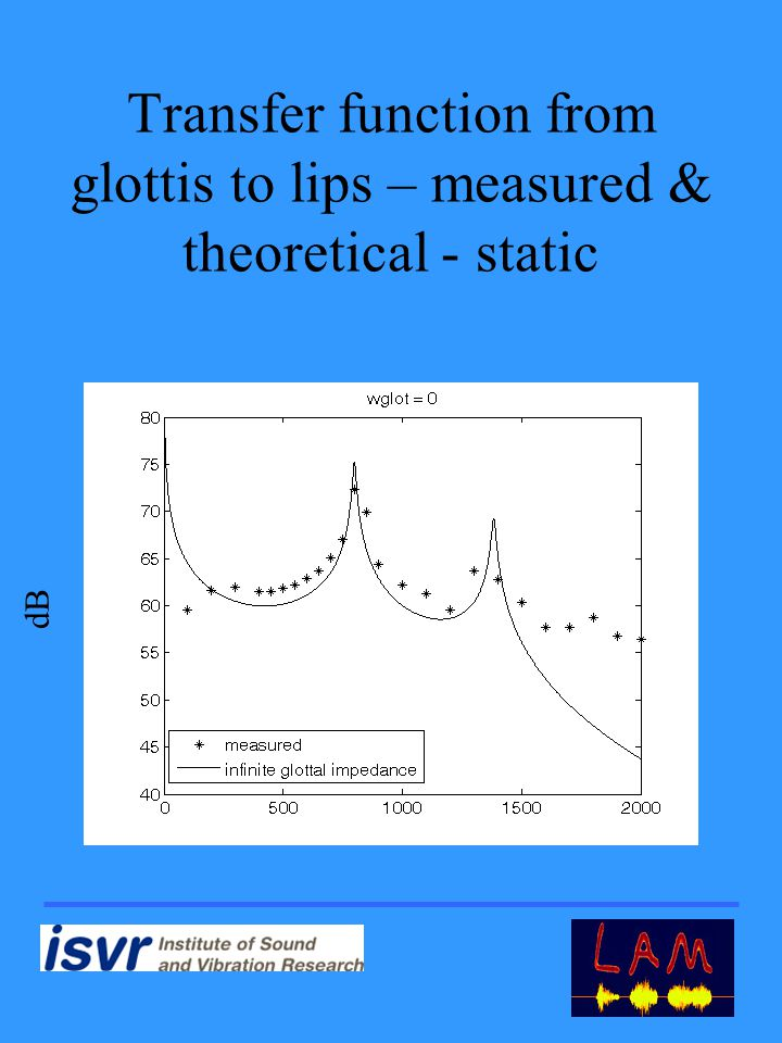 Transfer function from glottis to lips – measured & theoretical - static dB