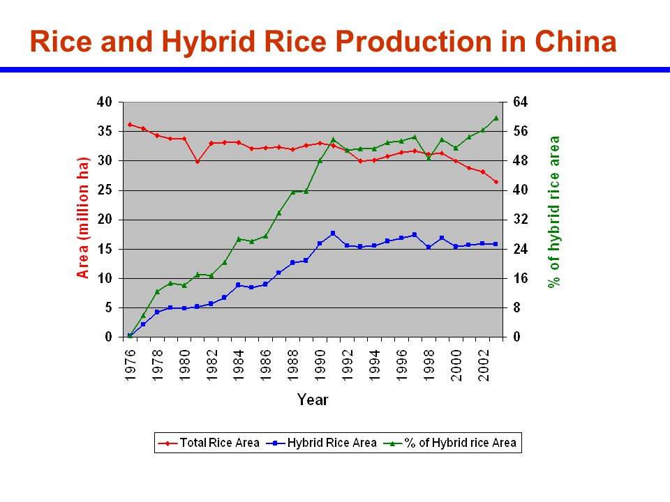 Difference of Whole Milling Yield and Chalk between Inbreds and Hybrids Data source: 2004 and 2005 NCT, Philippines