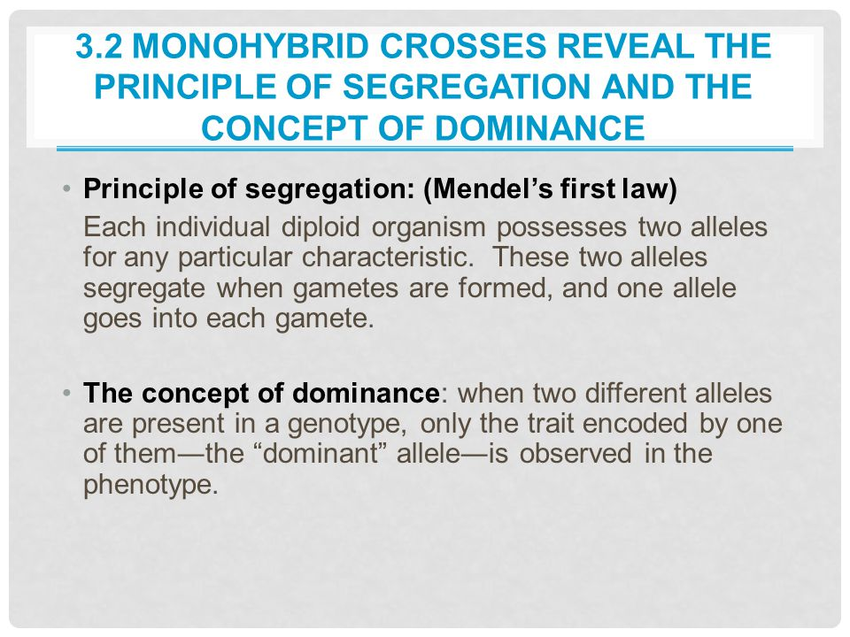 3.2 MONOHYBRID CROSSES REVEAL THE PRINCIPLE OF SEGREGATION AND THE CONCEPT OF DOMINANCE Principle of segregation: (Mendel's first law) Each individual