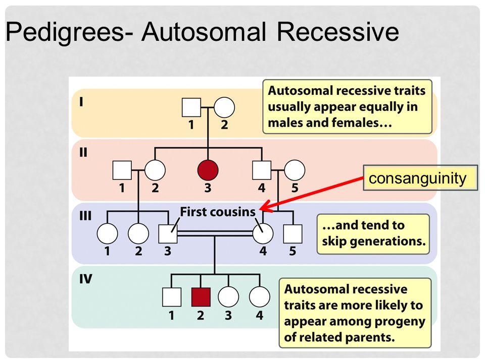 Pedigrees- Autosomal Recessive consanguinity