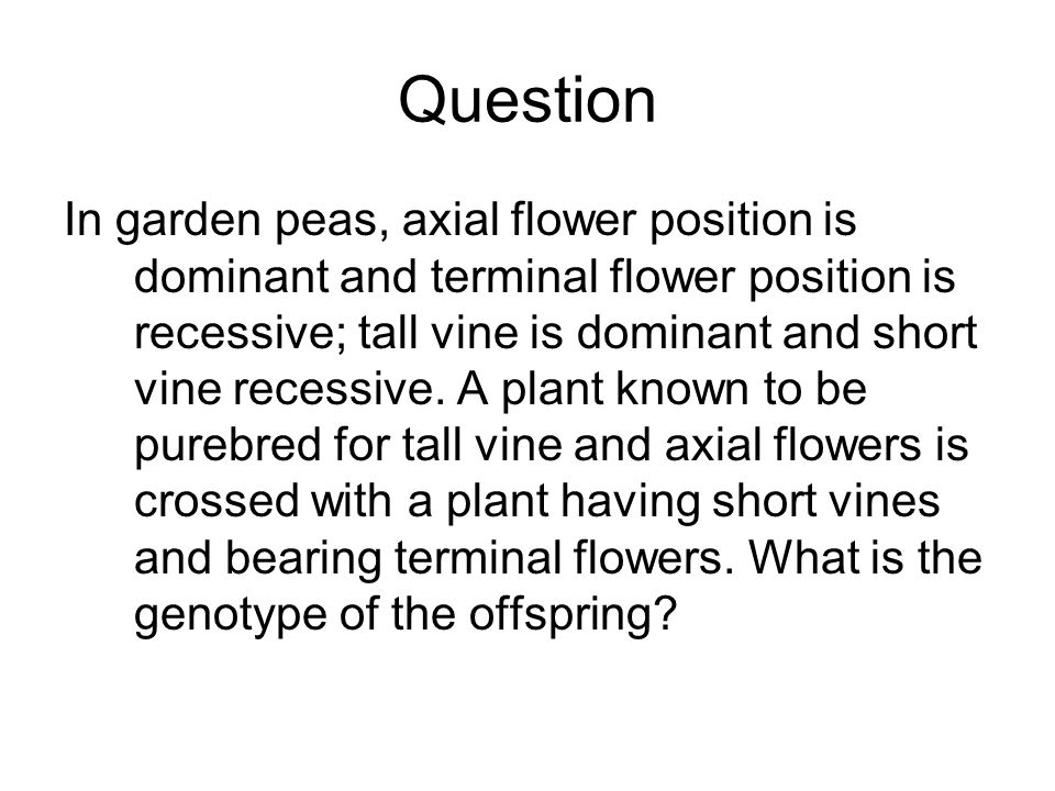 Question In garden peas, axial flower position is dominant and terminal flower position is recessive; tall vine is dominant and short vine recessive.