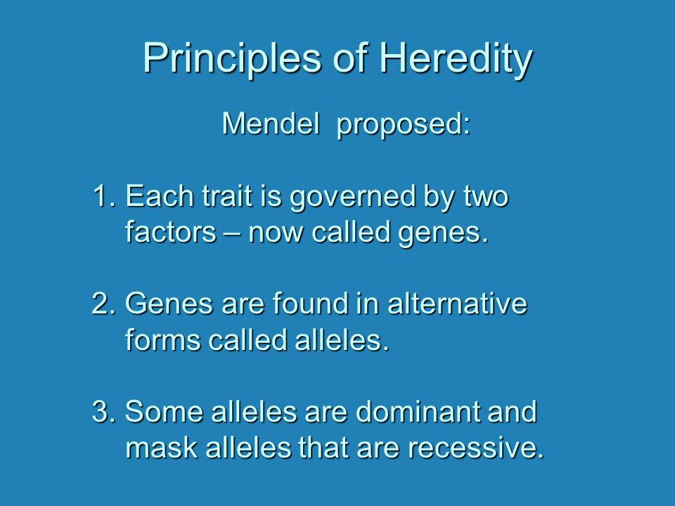 Principles of Heredity HomozygousDominantHomozygousRecessive Heterozygous Mendel's Experiment with Peas Round seed x Wrinkled seed Round seed x Wrinkled seed RR rr RR rr F1: All round seed coats Rr Rr