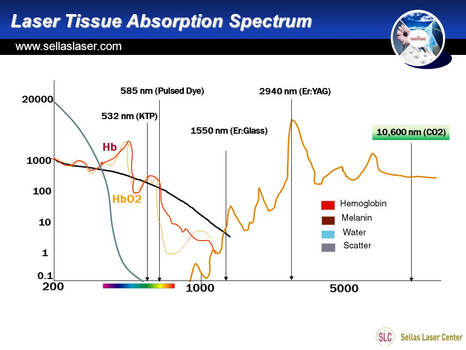 www.sellas.kr Laser Tissue Absorption Spectrum 532 nm (KTP) 585 nm (Pulsed Dye) 2940 nm (Er:YAG) 10,600 nm (CO2) 200 1000 5000 0.1 1 10 100 1000 20000 Hb HbO2 1550 nm (Er:Glass) www.sellaslaser.com