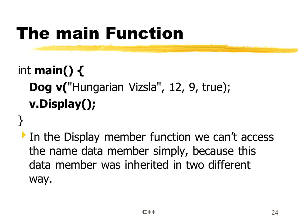 C++ 24 The main Function int main() { Dog v( Hungarian Vizsla , 12, 9, true); v.Display(); }  In the Display member function we can't access the name data member simply, because this data member was inherited in two different way.