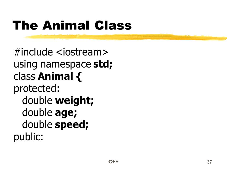C++ 37 The Animal Class #include using namespace std; class Animal { protected: double weight; double age; double speed; public:
