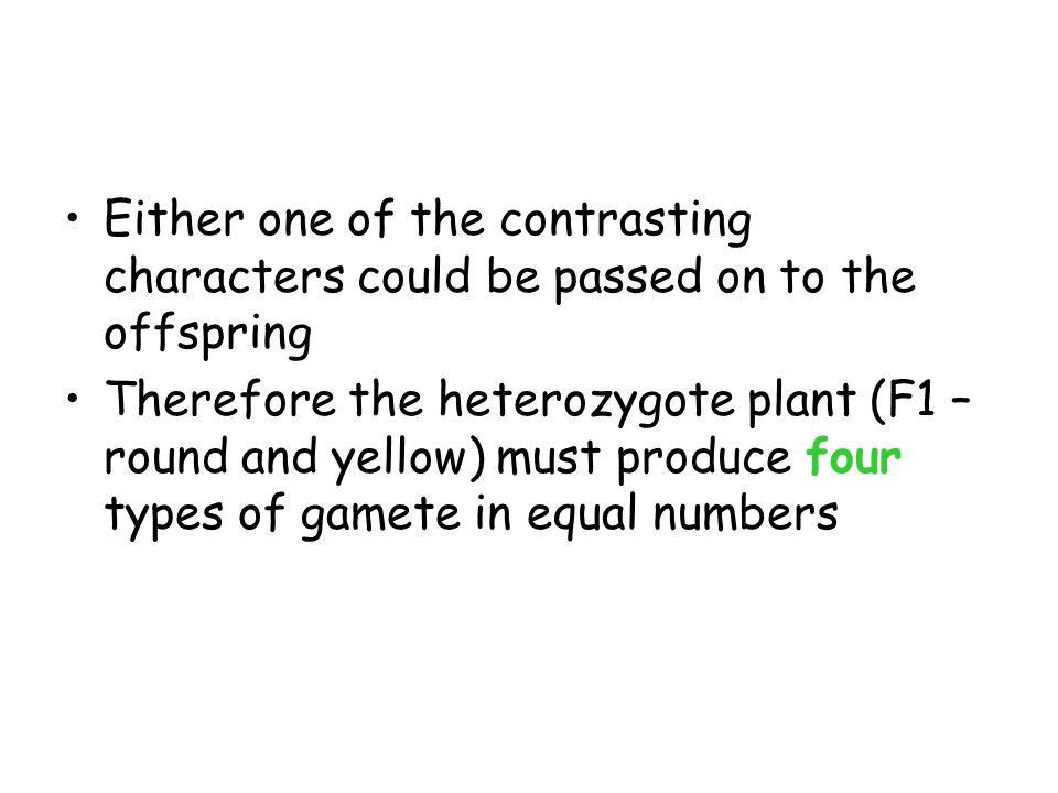 F1 phenotype RrYy Produces 4 different gametes RYRyrYry