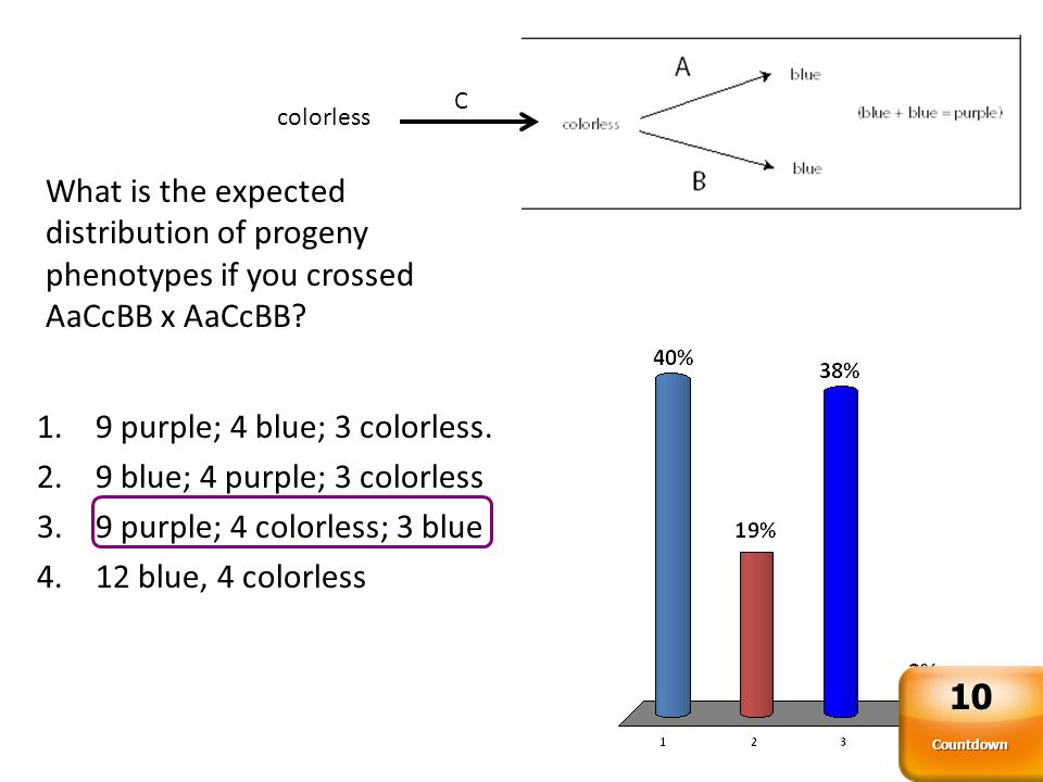 A pure-breeding purple plant is crossed to a pure-breeding colorless plant and all the F1 are all purple.