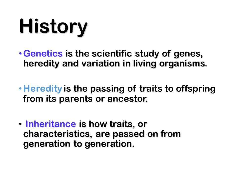 Codominance Both alleles contribute to the phenotype.