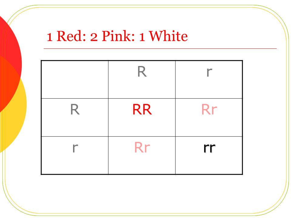 1 Red: 2 Pink: 1 White Rr RRRRr r rr