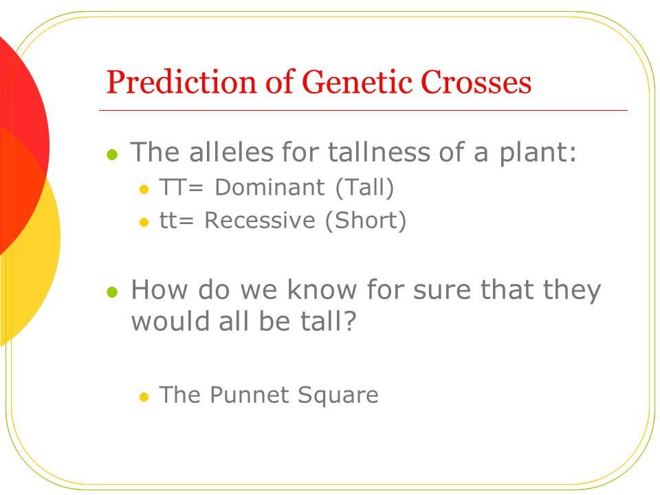 Prediction of Genetic Crosses The alleles for tallness of a plant: TT= Dominant (Tall) tt= Recessive (Short) How do we know for sure that they would all be tall.