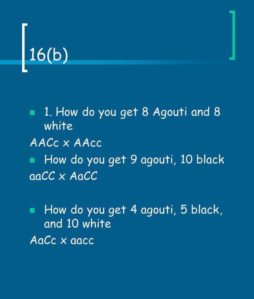 Problem 10 Fur color C ( full color) c ch ( chinchilla) c h ( himalayan ) c a ( albino )