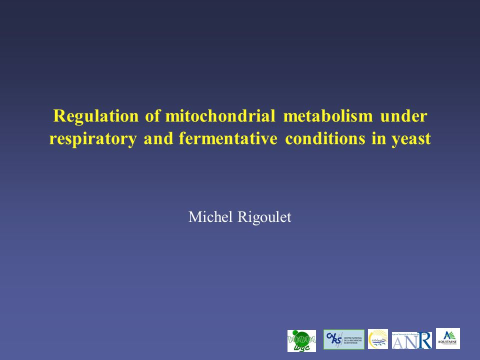 Regulation of mitochondrial metabolism under respiratory and fermentative conditions in yeast Michel Rigoulet