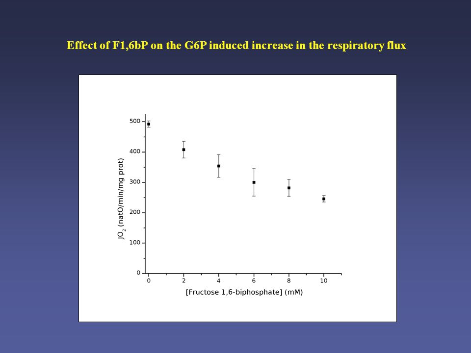 Effect of F1,6bP on the G6P induced increase in the respiratory flux