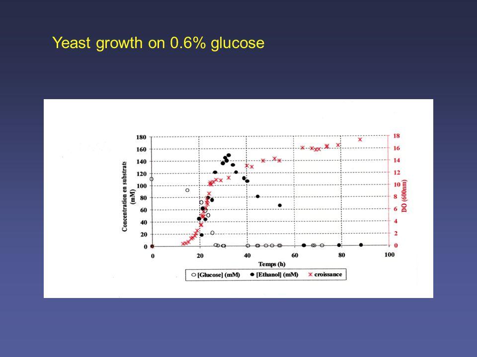 The main glucose-repression pathway