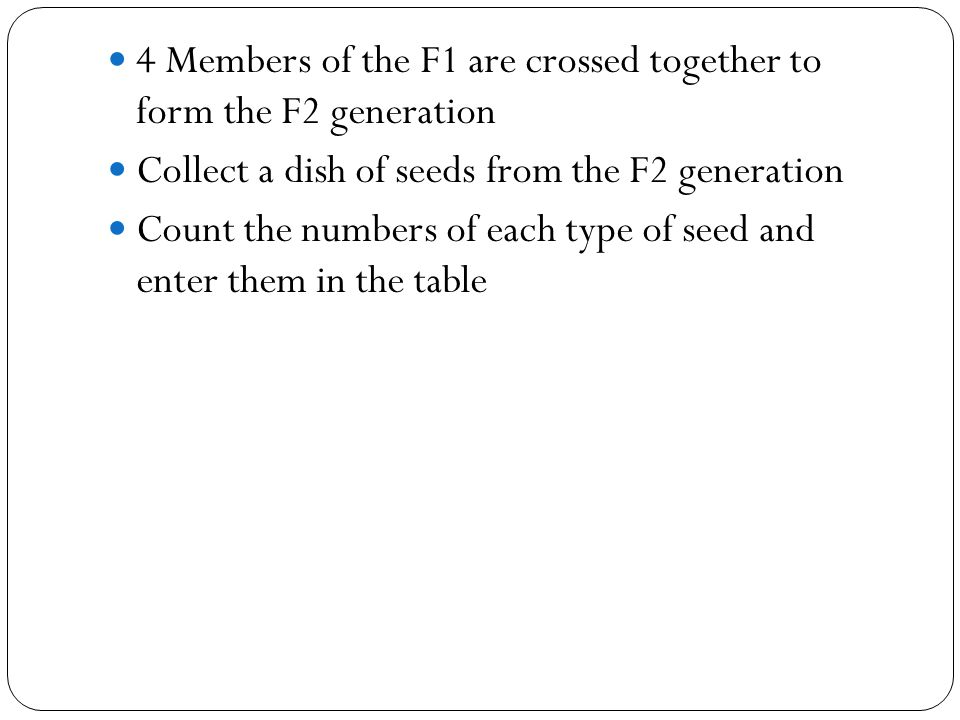 4 Members of the F1 are crossed together to form the F2 generation Collect a dish of seeds from the F2 generation Count the numbers of each type of se