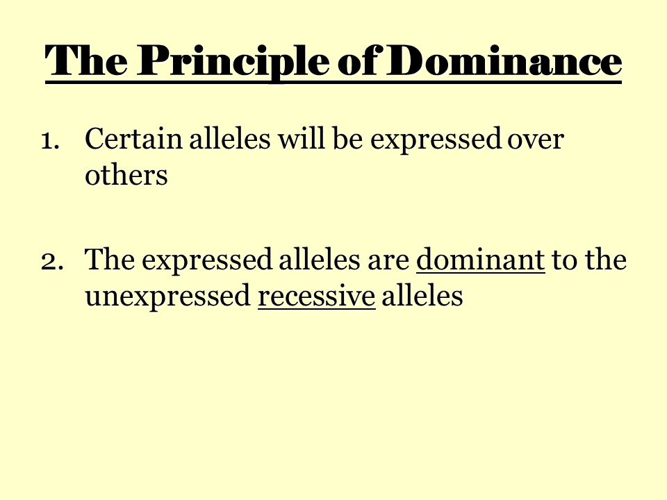 The Principle of Dominance 1.Certain alleles will be expressed over others 2.The expressed alleles are dominant to the unexpressed recessive alleles