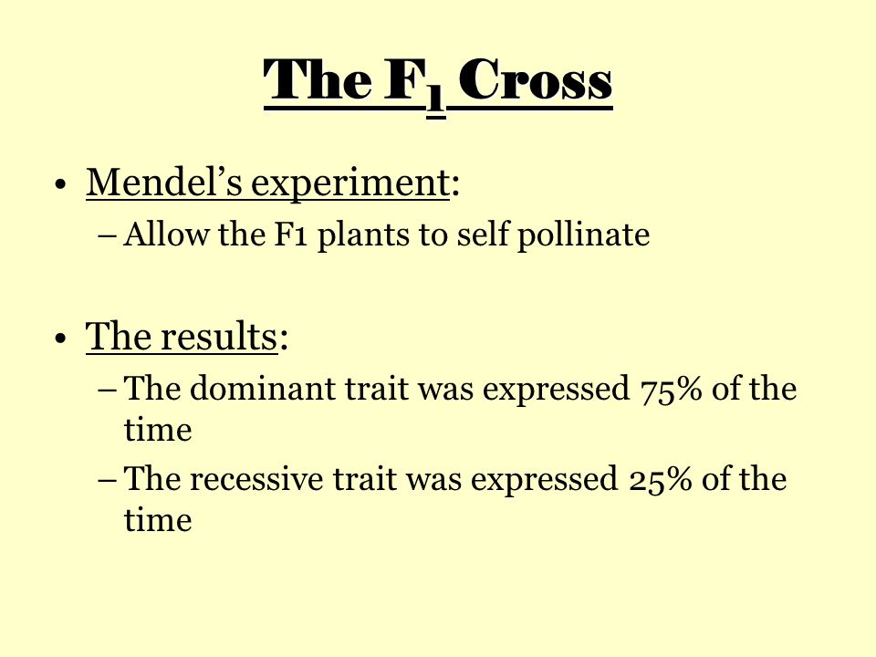 The F 1 Cross Mendel's experiment: –Allow the F1 plants to self pollinate The results: –The dominant trait was expressed 75% of the time –The recessive trait was expressed 25% of the time