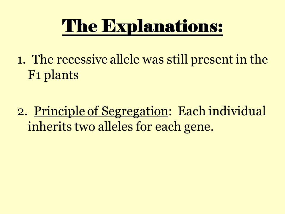 The Explanations: 1.The recessive allele was still present in the F1 plants 2.