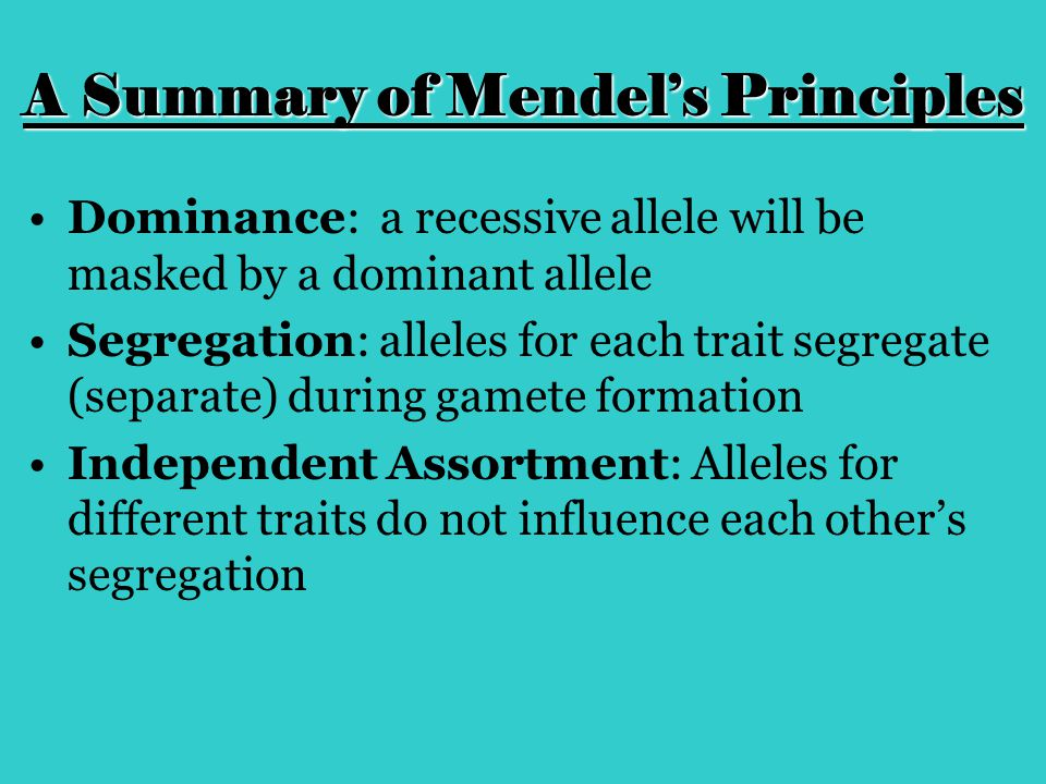 A Summary of Mendel's Principles Dominance: a recessive allele will be masked by a dominant allele Segregation: alleles for each trait segregate (sepa