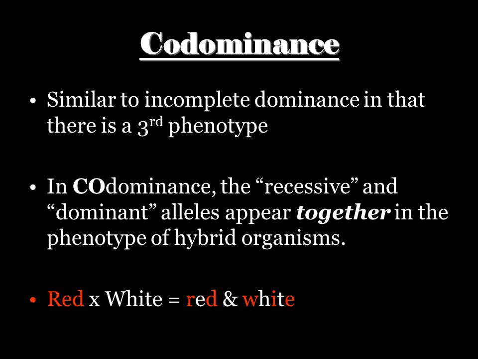 """Codominance Similar to incomplete dominance in that there is a 3 rd phenotype In COdominance, the """"recessive"""" and """"dominant"""" alleles appear together i"""