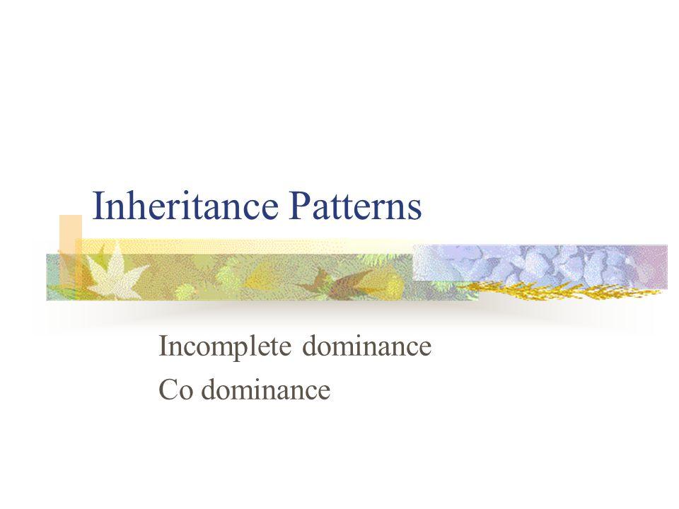 Inheritance Patterns Incomplete dominance Co dominance