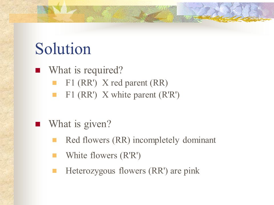 Solution What is required? F1 (RR') X red parent (RR) F1 (RR') X white parent (R'R') What is given? Red flowers (RR) incompletely dominant White flowe