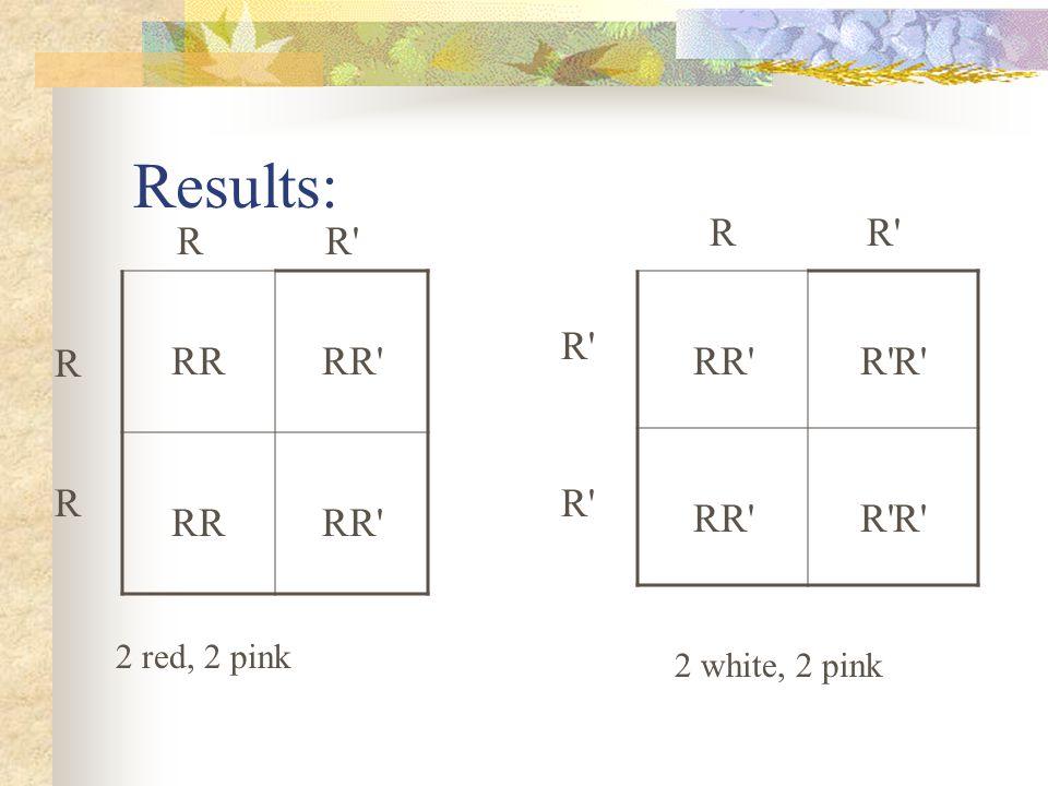 Results: RRR'RR' RRR'RR' RR'RR'R'R'R'R' RR'RR'R'R'R'R' RR'R' R R 2 red, 2 pink RR'R' R'R' R'R' 2 white, 2 pink