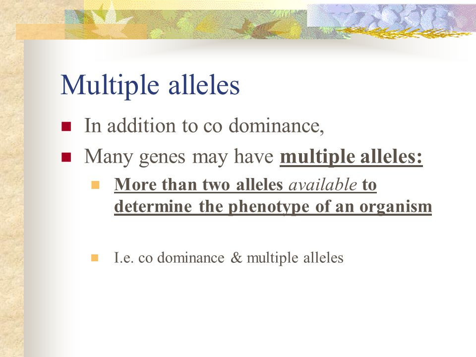 Multiple alleles In addition to co dominance, Many genes may have multiple alleles: More than two alleles available to determine the phenotype of an o