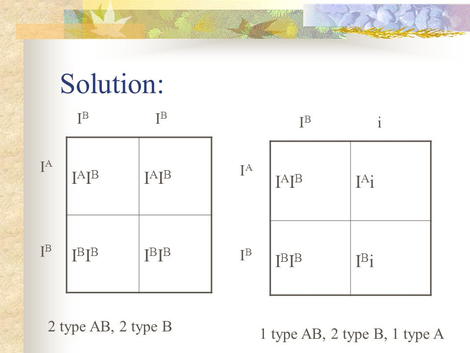 Solution: IAIBIAIB IAIBIAIB IBIBIBIB IBIBIBIB 2 type AB, 2 type B IAIBIAIB IAiIAi IBIBIBIB IBiIBi 1 type AB, 2 type B, 1 type A I B I B i IAIBIAIB IAI