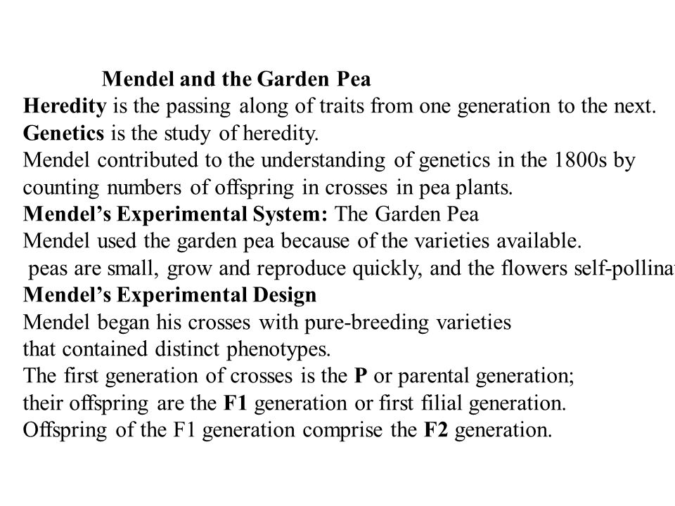 Mendel and the Garden Pea Heredity is the passing along of traits from one generation to the next.