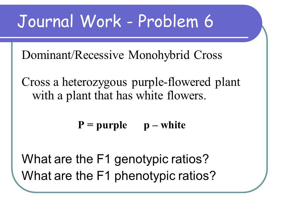 Journal Work - Problem 6 Dominant/Recessive Monohybrid Cross Cross a heterozygous purple-flowered plant with a plant that has white flowers. P = purpl