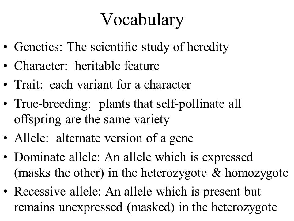Vocabulary Genetics: The scientific study of heredity Character: heritable feature Trait: each variant for a character True-breeding: plants that self