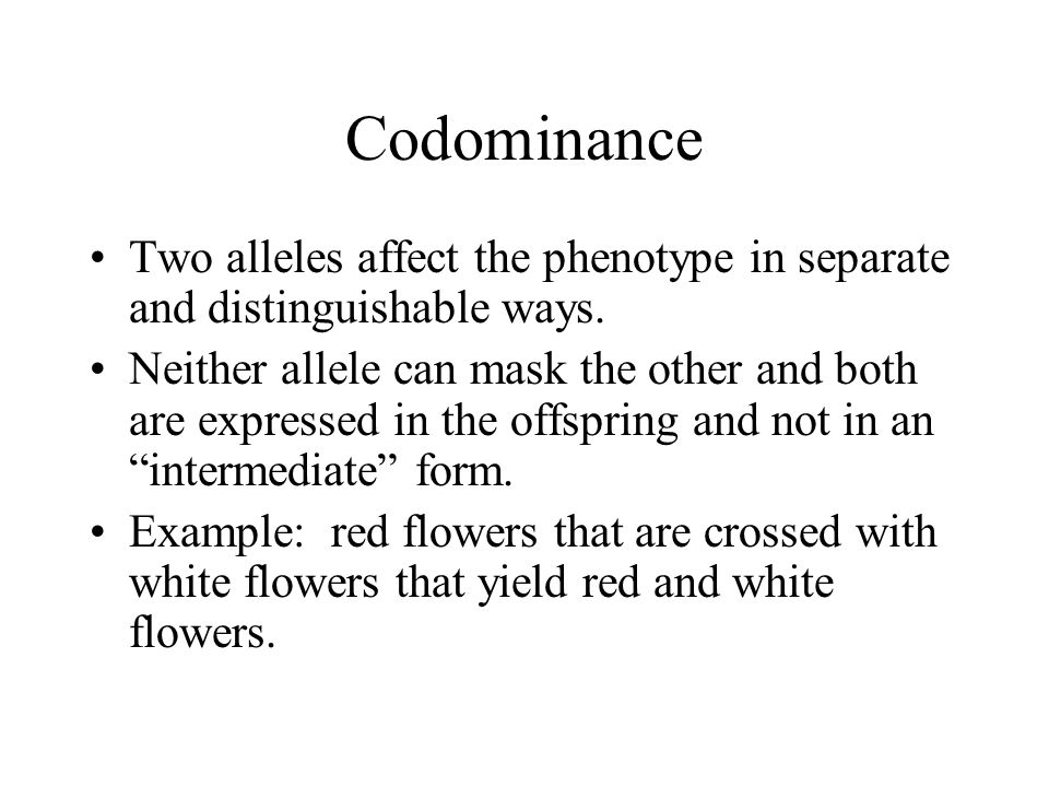Codominance Two alleles affect the phenotype in separate and distinguishable ways. Neither allele can mask the other and both are expressed in the off