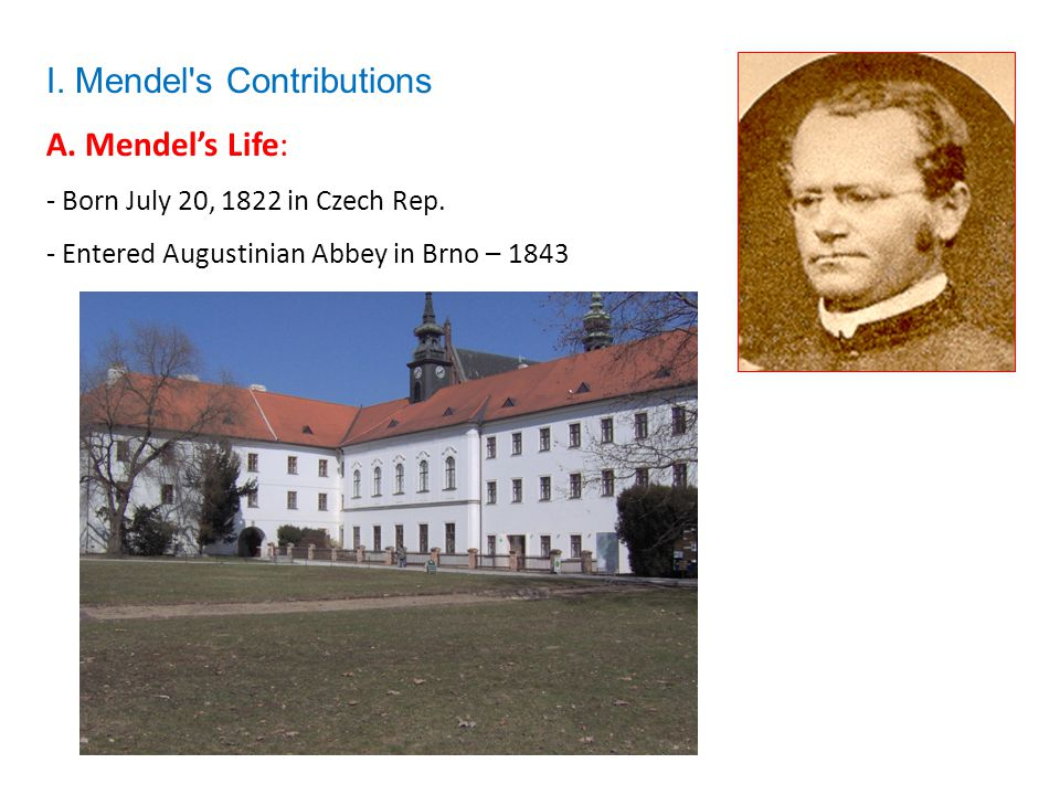 A. Mendel's Life: - Born July 20, 1822 in Czech Rep. - Entered Augustinian Abbey in Brno – 1843