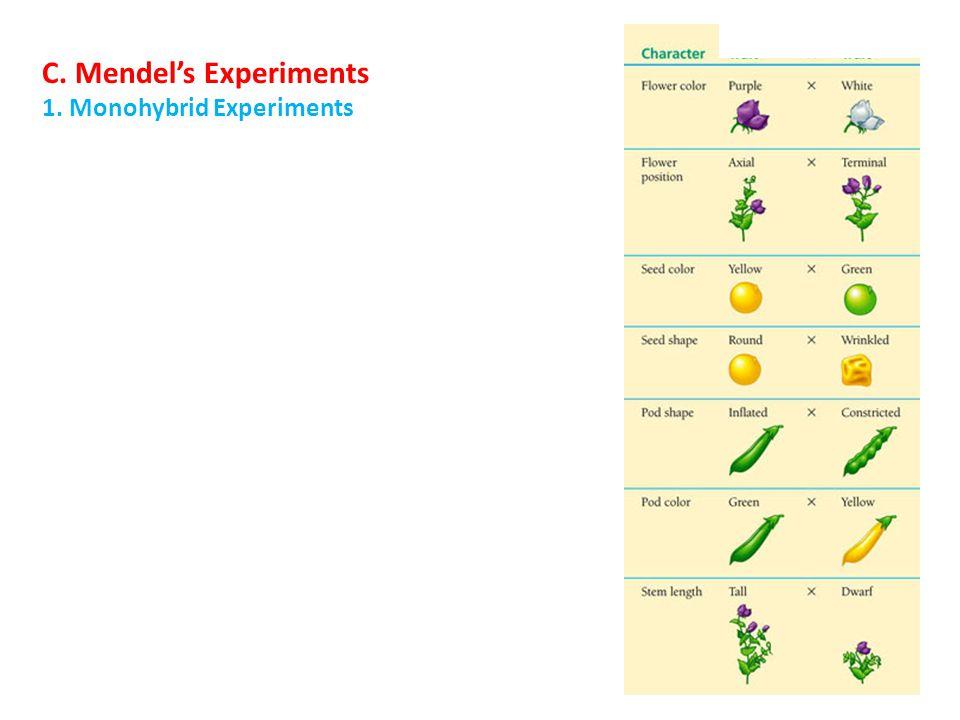 1. Monohybrid Experiments