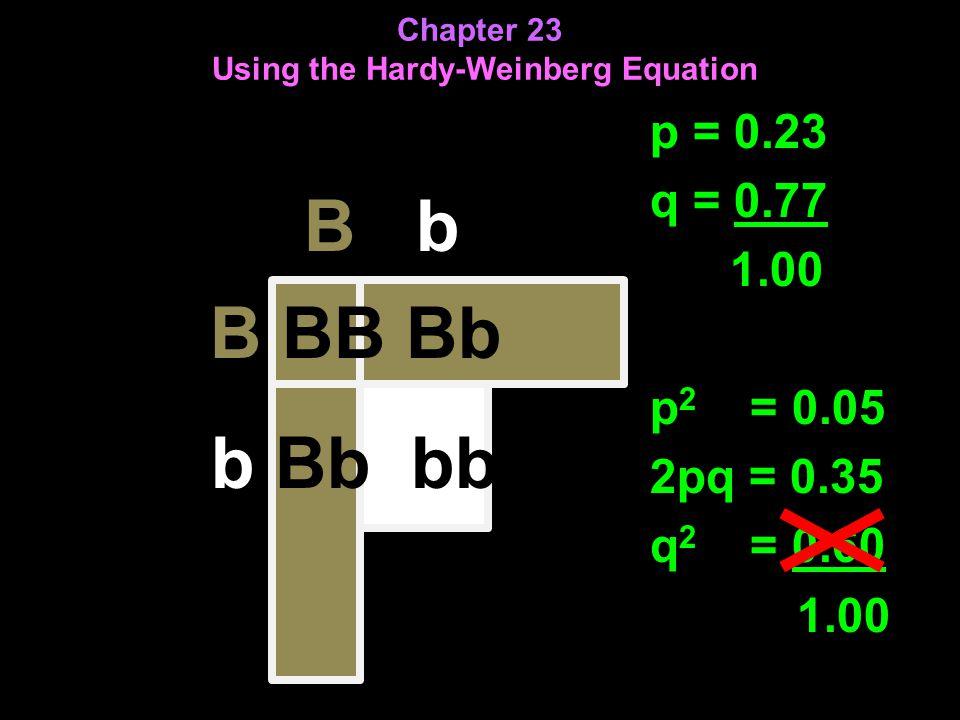 Chapter 23 Using the Hardy-Weinberg Equation p = 0.23 q = 0.77 1.00 p 2 = 0.05 2pq = 0.35 q 2 = 0.60 1.00 B b B BB Bb b Bb bb