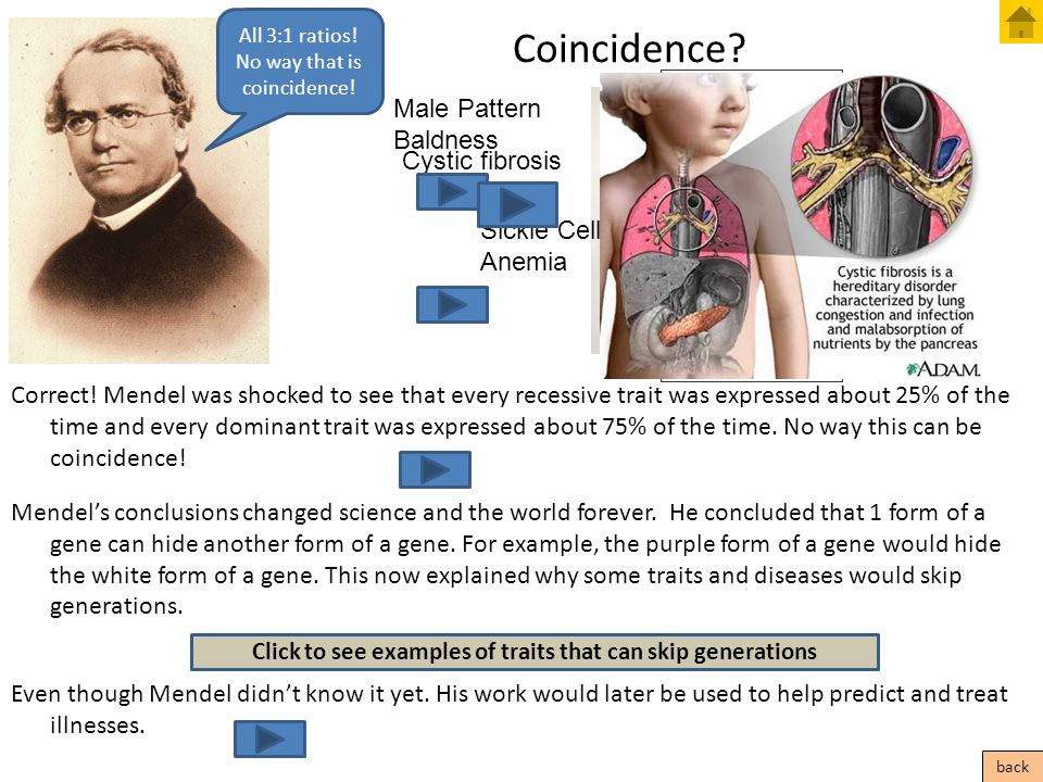 Coincidence? Correct! Mendel was shocked to see that every recessive trait was expressed about 25% of the time and every dominant trait was expressed