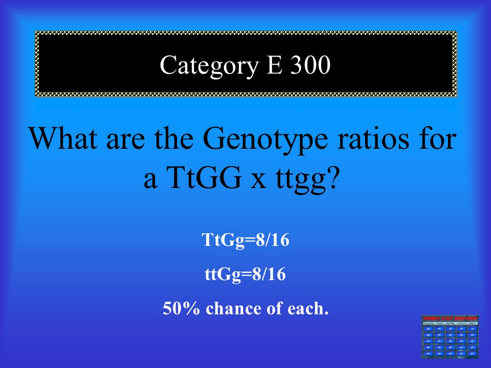 Category E 200 Explain Phenotype! The physical characteristics expressed by genes.