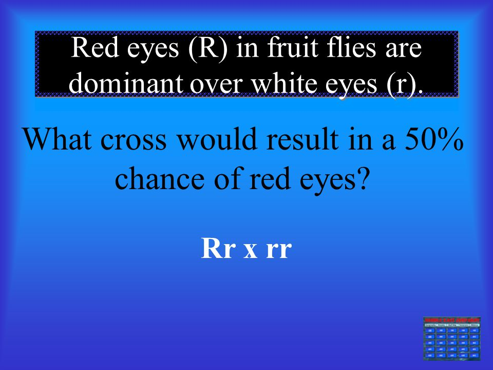 Red eyes (R) in fruit flies are dominant over white eyes (r).