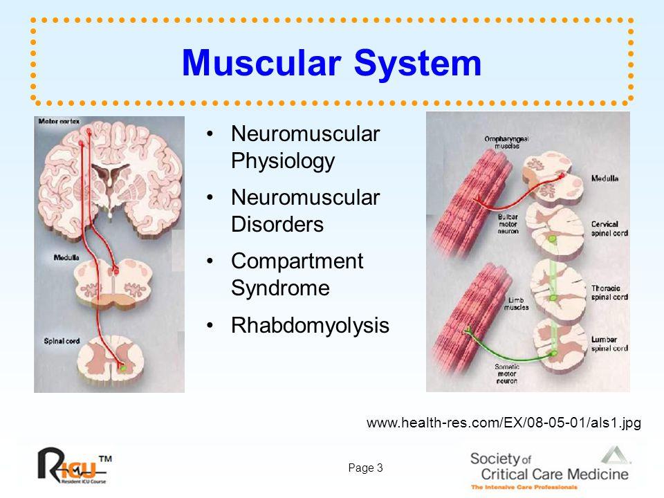 Page 54 Image Sources wendyusuallywanders.files.wordpress.com/2008/01/mgdroop.jpg www.aofoundation.org/AOFileServerSurgery/MyPortalFiles?FilePath =/Surgery/en/_img/surgery/FurtherReading/PFxM2/1.6-11.jpg www.aurorahealthcare.org/healthgate/images/si2141.jpg www.brighamandwomens.org/neurology/Images/Neuromuscular- Disease.jpg www.brown.edu/Courses/Bio_160/Projects2000/Polio/Reflexcopy.jp g www.bu.edu/bridge/archive/2005/04-29/photos/competition01.jpg www.cdc.gov/ncidod/EID/vol8no12/images/02-0532_1t.jpg www.cerb.fr/imagespm/reins.jpg